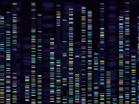 medicina_genomica_2